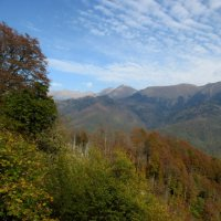 Роза Хутор... в горах :: Нина Бутко