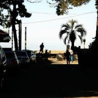 shadow play c :: Temur Tsivadze