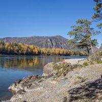 Катунь-река :: Виктор Четошников