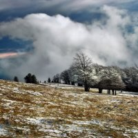 в Юрских горах :: Elena Wymann