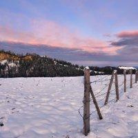 утро первого снега :: Elena Wymann