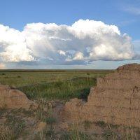 Проплывало солнечное облако над развалинами древней Сары Арки... :: Георгиевич