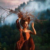Гуляющее дерево :: Татьяна Мышкина
