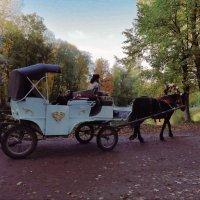 Везёт лошадка удалая меня в осенний парк... :: Анастасия Белякова