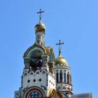 Кафедральный собор святого равноапостольного великого князя Владимира, г. Сочи :: Александр