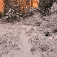Снежные узоры в горах :: Горный турист Иван Иванов