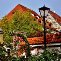 Город,фонарь,осень :: backareva.irina Бакарева