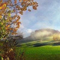 осень золотая :: Elena Wymann