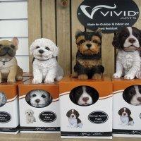 Для тех, кто не может, но хочет иметь дома собаку... :: Тамара Бедай