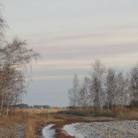 В окне берез мое село. :: сергей