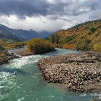 река Кубань :: Александр Богатырёв