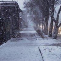 Снежность :: Лена .