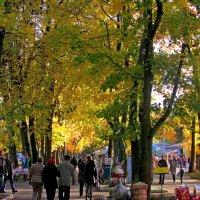 Гулянье в парке :: Сергей Карачин