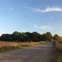 Bask on the road :: Alex Chernavski
