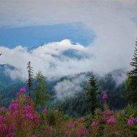 Ползающие облака :: Сергей Чиняев
