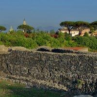 На развалинах Помпеи :: Olcen Len