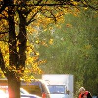 А осень листья все бросала и бросала, а баба Люба все мела, мела, мела.... :: SVetlana Veter