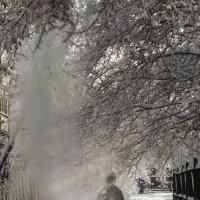 снежно :: Екатерина Агаркова
