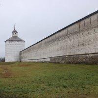 Внешняя стена монастыря. :: веселов михаил