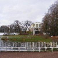 Осенние  зарисовки. :: Татьяна