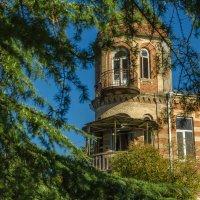 Сказочный дом :: Светлана Винокурова