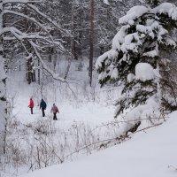 Пока снег неглубокий :: Валерий Михмель