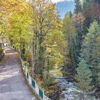 Осень в горной Абхазии :: Николай Николенко
