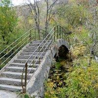 Горбатый мост! :: ирина