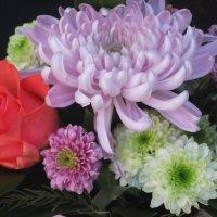 Букет цветов :: ~ Николай ~