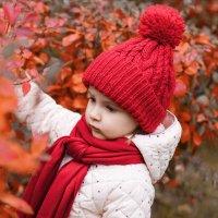 Наша красная осень :: Фотограф Ирина Белянина