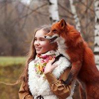 Рыжая банда! :: Фотограф Ирина Белянина