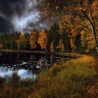 Осеннее настроение. :: Lidija Abeltinja