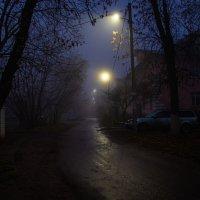 Утро, туман, фонари :: Andrew