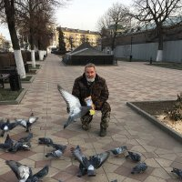 Кормлю голубей. :: Василий Капитанов