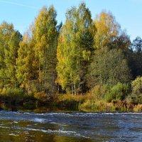 Река :: Александр Генрихович Завьялов