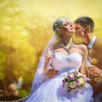 Свадебное фото. :: ОЛЕГ ЧЕБАНЕНКО