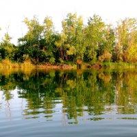 Отражение хранит река... :: Лидия Бараблина