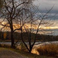 На озере вечером. :: Anastasiia Lang