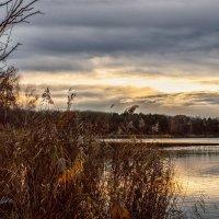 Природа вечером на озере :: Anastasiia Lang