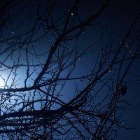 Ночной туман :: Юрий Гайворонский