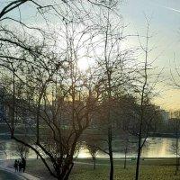 Графский пруд( усадьба Орловых-Денисовых) :: Светлана Дунаева