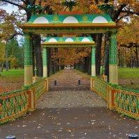 Китайский мостик и осень... :: Sergey Gordoff