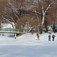 Зимний парк :: # fotooxota