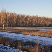 Первый день зимы. :: сергей