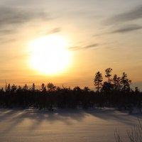 Зима :: The photo