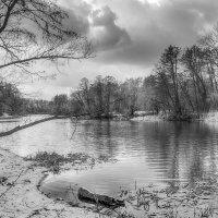 На реке Цне ....... :: Александр Селезнев