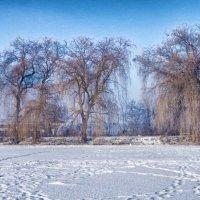 морозный день :: юрий иванов