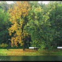 Осень в Екатерининском парке. :: Татьяна Беляева