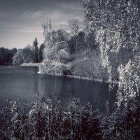 Безмятежность парка. :: Андрий Майковский