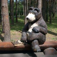 Медведь :: Дмитрий (Горыныч) Симагин